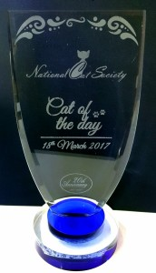 Trophy/Glass Engraving
